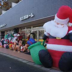 今年も金太郎にもクリスマスがやってきました♪